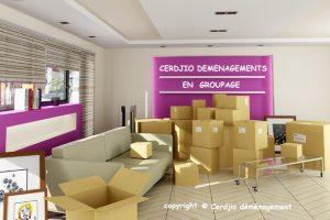 Cerdjio Déméngements Garde meubles